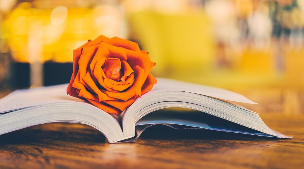 Hochzeitsbücher als Ideenquelle für die eigene Hochzeit nutzen