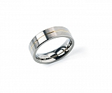 Titanium Ring Gold plated 0101-21